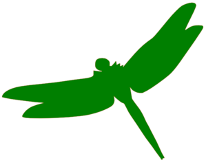 Green Dragonfly Clip Art