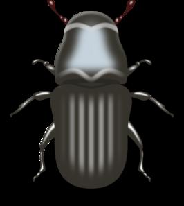 Bug Clip Art At Clker