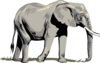 Elephant Side 2 Clip Art