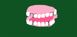 Fake Teeth Clip Art