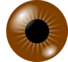 Brown Eye Clip Art