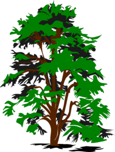 Green Brown Tree Clip Art