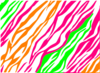 Pink, Green, Orange Zebra Print Clip Art
