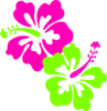Hibiscus Pink Lime Green Clip Art