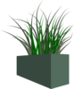 Grass In Square Planter Clip Art