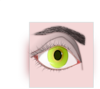 Female Eye And Eyebrow Clip Art