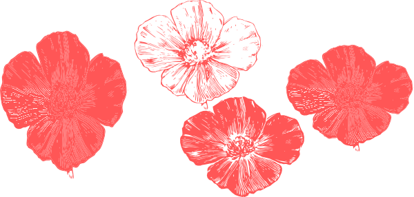 Peach poppies clip art at clker vector clip art online download this image as mightylinksfo