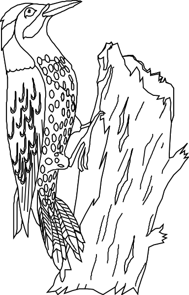yellowhammer bird coloring pages - photo #4
