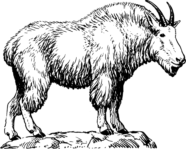 mountain goat clip art at clkercom vector clip art