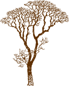 Brown Tree Clip Art