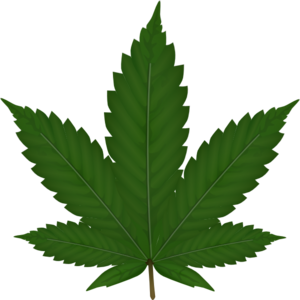 cannabis leaf clip art at clker com vector clip art online rh clker com  free marijuana leaf clipart