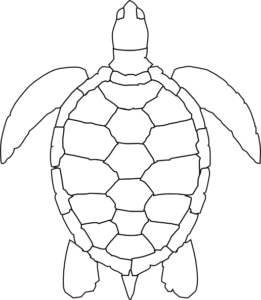 Turtle Outline Clip Art at Clker.com - vector clip art ...
