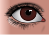Female Brown Eye Clip Art
