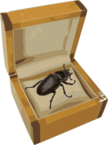 Beetle In A Box Clip Art