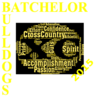 Batchelor Cross 10 Clip Art