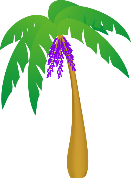 Palm Tree Leaf Template Palm tree clip art - vector