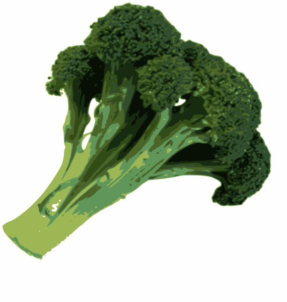Broccoli Clip Art at Clker.com - vector clip art online, royalty free