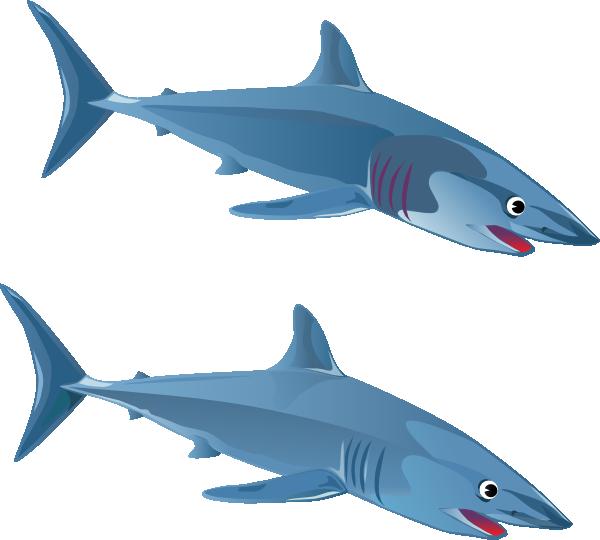free animated shark clipart - photo #16