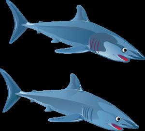 blue shark clip art at clker com vector clip art online royalty rh clker com clipart sharks free clip art shark fin