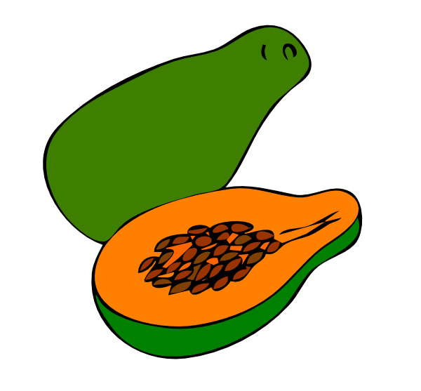 papaya clipart -#main