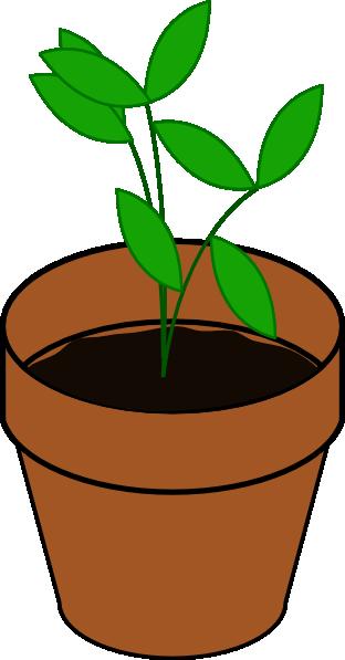 Pot Clip Art ~ Plant in pot clip art at clker vector