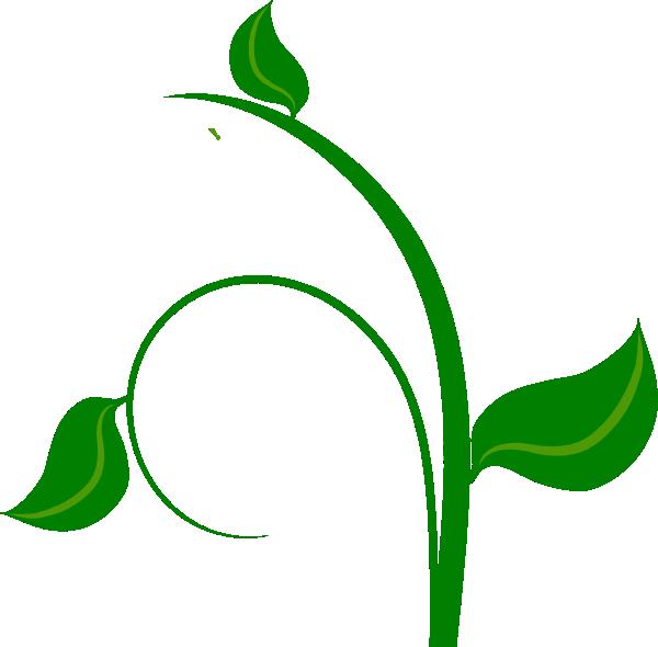 leaf graphics clipart - photo #21