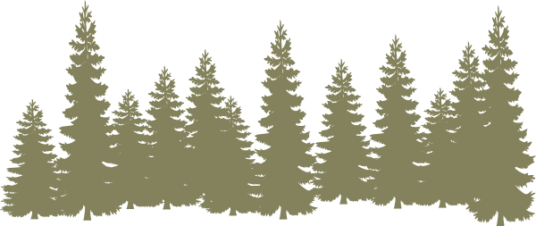 light green forrest clip art at clker com vector clip free family tree clipart designs free family tree clipart images