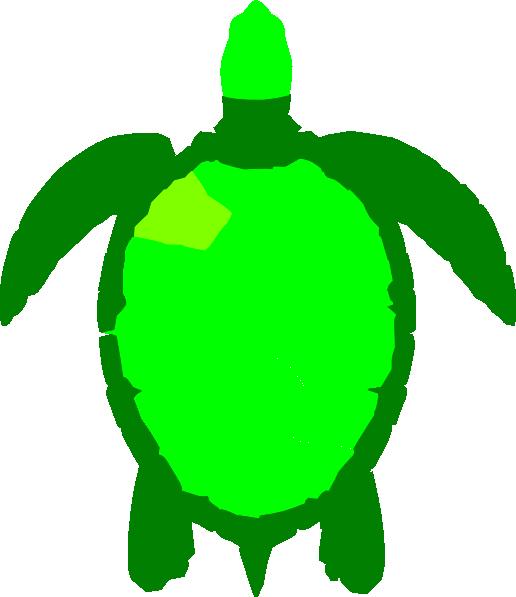 green turtle clip art - photo #7