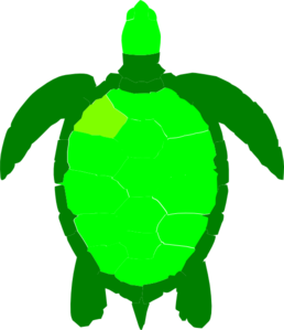 green sea turtle clip art at clker com vector clip art online rh clker com Black and White Sea Turtle Green Sea Turtle