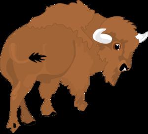 bison clip art at clker com vector clip art online royalty free rh clker com bison clip art images bison clip art free
