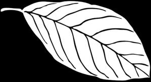 Leaf Clip Art At Clker Com Vector Clip Art Online