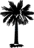 South Carolina Flag Palmetto With No Moon - Black And White Clip Art