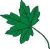 Mid Green Maple Leaf Clip Art