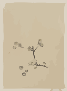 [a Tree Branch With Blossoms] Clip Art