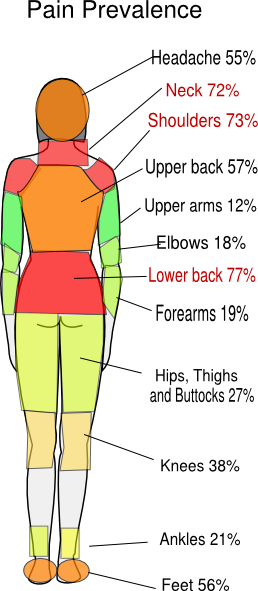 Pain Profile No Background 3 Clip Art At Clker Com
