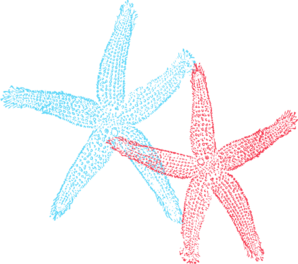 Wendy Starfish Clip Art