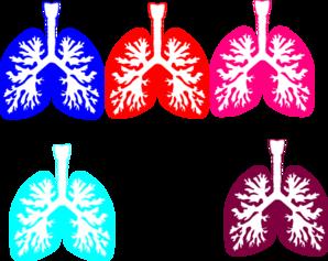 Lung Color Tika Hp Clip Art at Clker.com - vector clip art online ...