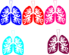Lung Color Tika Hp Clip Art