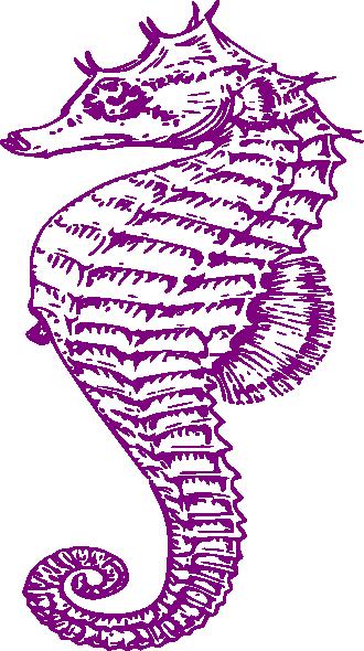 Purple seahorse clipart