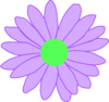 Purple Outline Daisy Clip Art