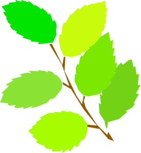 Tree Branch Clip Art