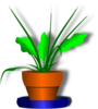 Flower Pot With Green Plant Clip Art