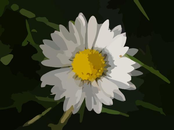 Daisy Clip Art at Clker.com - vector clip art online ... White Daisy Flowers Clipart