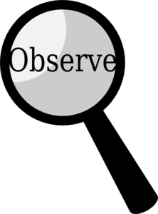 Image result for observing lessons