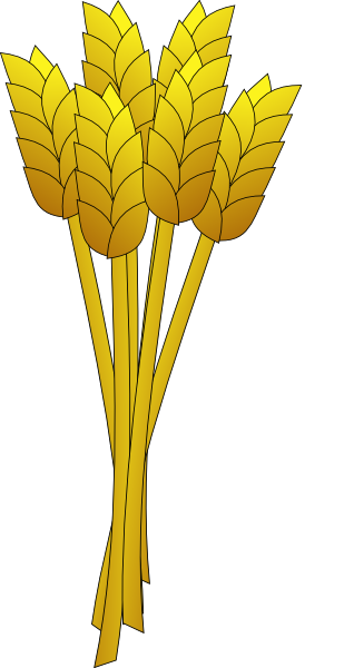 Wheat Stalk Vector Related Keywords & Suggestions - Wheat ...