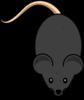 Black Mouse Clip Art