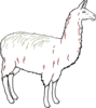 Llama Outline Clean Clip Art