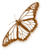 Monarch Butterfly Brown Clip Art
