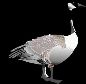 canadian goose clip art at clker com vector clip art online rh clker com goose clipart images goose clipart png