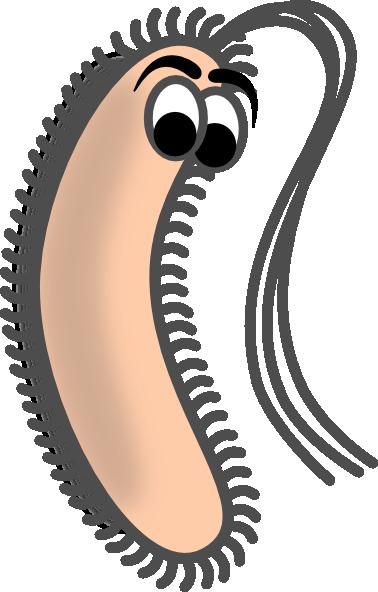 Funny Bacteria Clip Art at Clker.com - vector clip art online, royalty ...